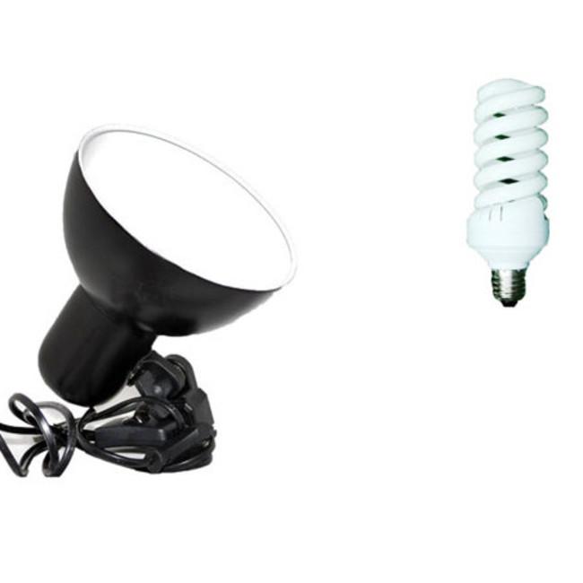 Крепление для одной студийной фотолампы постоянного света 1 х 38ВТ